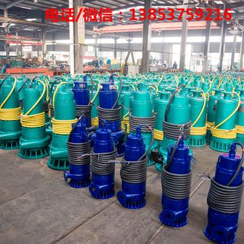 济宁安泰防爆潜水泵WQB15-22-2.2WQB防爆排污泵无堵塞