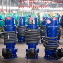 合肥WQB不锈钢铸铁潜水排污泵120-50-30自动搅匀无堵塞水泵图片