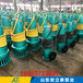 衡水市WQB30-16-3隔爆型潛污泵用在加氣站