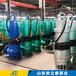 德陽市WQB50-50-18.5WQB防爆潛污泵用在加油站