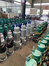 濟南新型WQB防爆潛污泵現貨供應圖片