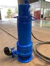 WQB防爆排污泵,石家庄耐磨防爆潜水泵图片