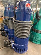 沈阳WQB防爆潜水泵,防爆潜污泵图片