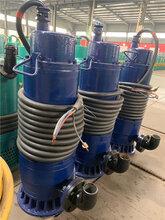 WQB防爆排污泵,杭州矿用防爆潜水泵图片
