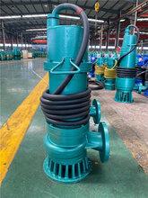 长沙WQB防爆潜水泵价格,防爆潜污泵图片