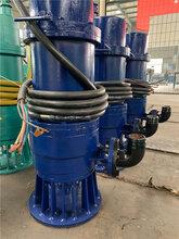 泉州矿用防爆潜水泵,防爆潜污泵图片