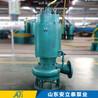 北京BQS矿用排沙泵用途
