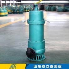 BQS礦用潛水泵,西安BQS礦用排沙泵型號圖片
