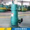 不锈钢BQS矿用排沙泵用途