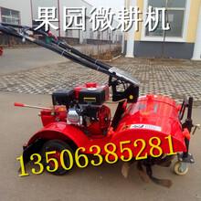 扬州出售汽油自走式微耕机价格