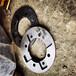 西安鉆機傳扭盤6000ZYWLDA0302-02