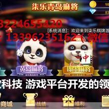 特色棋牌蓬勃发展,枣庄华软棋牌开发公司尤其引人关注