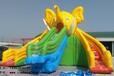 儿童戏水大象水滑梯充气大象滑梯大象滑水