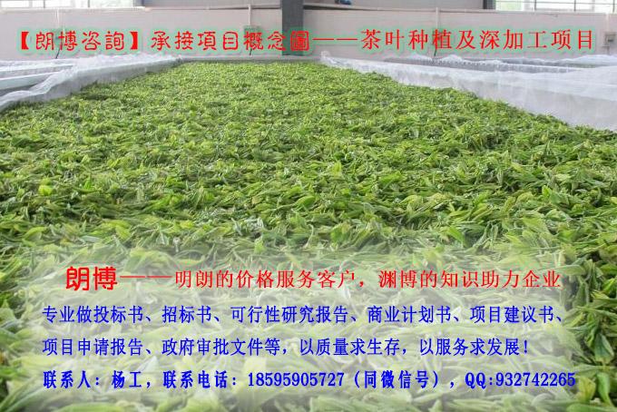 海原县专业编制新能源汽车及专用车项目项目申请报告可研报告