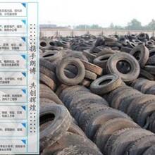 丹巴县高质量服务绿色有机农业资金申请报告图片