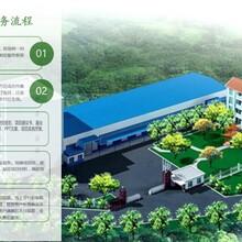 龙游县代做碳汇林、植树种草及林木种苗花卉资金申请报告图片