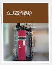 东莞燃气锅炉销售、维修、保养