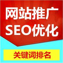 东莞网站推广网站优化关键词排名SEO优化