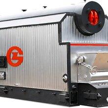 生物质电站锅炉东莞燃气蒸汽发生器厂家