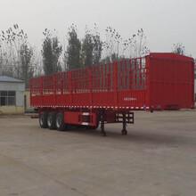 最新公告输送带自卸半挂车一台多少钱,13米重型输送带自卸半挂车价格图片