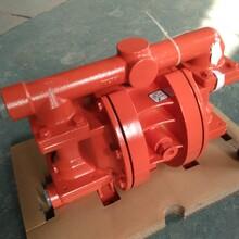 年底资金回本促销威尔顿隔膜泵膜片气阀配件P.025/KKPPP/WFS/TF/KWF图片