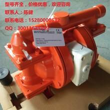 威尔顿气动1寸塑料泵XPX800/HHSSS/VTS/VT/HTF现货图片