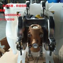 配件大量现货威尔顿p1或p100泵用膜片(01-1010-52丁腈隔膜)图片