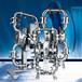 怀柔威尔顿半寸食品级气动隔膜泵P1/SSPPP/TNU/TF/STF/0070