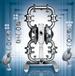 半寸卫生级气动隔膜泵P1/SSPPP/TEU/TF/STF/0070威尔顿