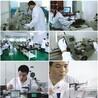 中山市儀器儀表實驗室儀器校驗廠家-流量計校準