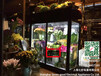 大理花店鲜花柜鲜花冷风柜花束保鲜柜