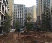 长安最大村委统建楼《建安花园》高大尚全新现房图片