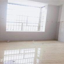 首付12.8万起买长安沙头市场附近小产权房大三房楼盘图片