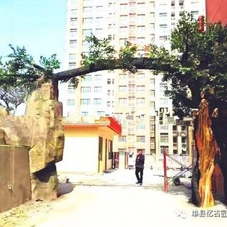 日照假树大门_假树大门制作厂家图片5