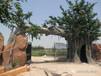 鹽城垂釣園假樹景觀大門,垂釣園景觀大門設計制作