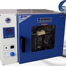 烤箱恒温箱热老化试验箱电热恒温鼓风干燥箱高温工业烘箱