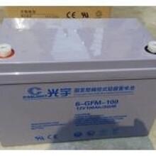 光宇蓄电池6-GFM-65哈尔滨光宇蓄电池上海区域代理商销售