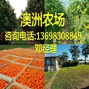 正规出国劳务--保签项目-澳洲果蔬农场急招年薪36万以上