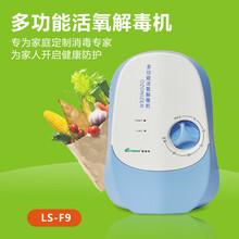 大量供应质优价廉果蔬解毒机臭氧机活氧机一件代发