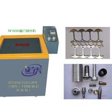 供应医疗器磁力抛光机诺虎NF-9000图片