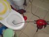 海淀专业维修各式水龙头、马桶水箱、自来水管、维修阀门、水斗
