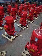 山东消防自喷泵厂家直销欢迎来电咨询图片