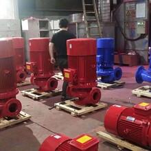 云南立式单级消防泵哪家公司价格低?公司实力雄厚图片