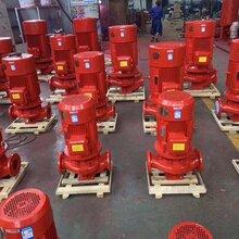 重庆立式单级消防泵价格多少?公司实力雄厚图片