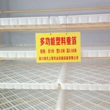 蚕具多功能蚕箔塑料蚕箔大蚕饲育设备养蚕用具养蚕设备图片