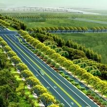 勐腊县做光伏发电项目可研报告可行性报告的公司图片