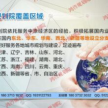 叶县本地做产业发展规划公司-胚布实施方案