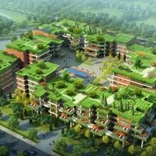 商丘产业发展规划公司-商丘项目建议书图片