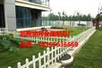 优质PVC草坪护栏/PVC草坪护栏生产厂家/批发PVC花园围栏-瑞邦金属
