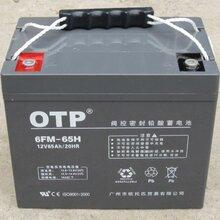 OTP蓄电池6FM-65H详细介绍